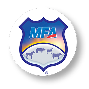 MFA Shield Products Defined